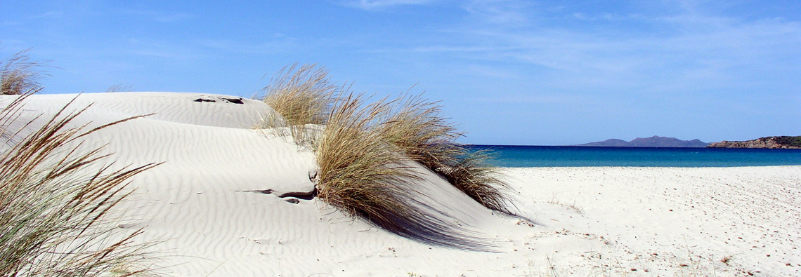 dune-porto-pino-1140x395